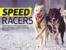 Dogs of Speed