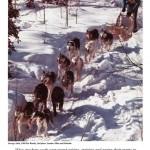 1969.03-Doyon about dog mushing pride