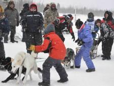 Youth & Sled Dog Program
